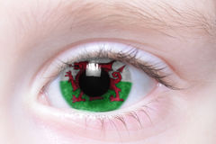 Human eye with national flag of wales Stock Photo