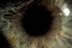 Human eye maximizing macro royalty free stock images
