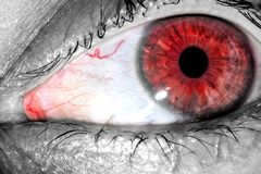 Human eye with red tight veins on protein close-up texture background Royalty Free Stock Photos