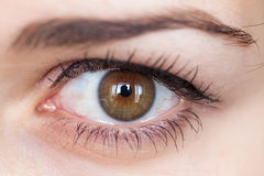 Human eye with reflection. Royalty Free Stock Photo