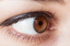 Human eye. Royalty Free Stock Images