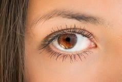 Human eye. Royalty Free Stock Photo