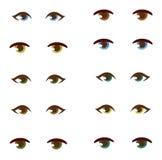 Human eye vector set. Royalty Free Stock Photography