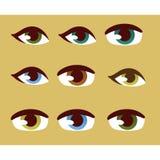 Human eye vector set. Stock Images