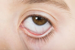 Human eye wide open Stock Image