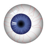 Human eyeball. Abstract vector illustration Royalty Free Stock Photo