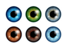 Human eyeballs iris pupils set - assorted colors. Human eyeballs iris pupils set isolated on white background - blue gray brown green colors. Colorful eyes Stock Photos