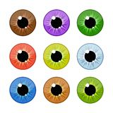 Human eyeballs iris pupils set isolated on white background. Colorful eyes. Vector Illustration Stock Photos