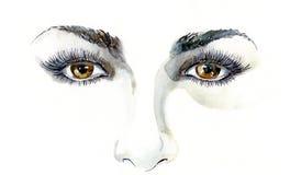 Human eyes Stock Image