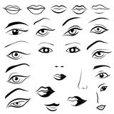 Human eyes, lips, eyebrows and noses Stock Image