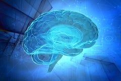 human för hjärna 3d stock illustrationer