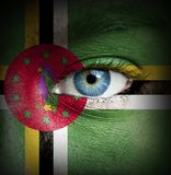 Human face painted with flag of Dominica royalty free stock photography