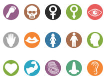 Human feature round buttons icons set. Isolated human feature round buttons icons set on white background Royalty Free Stock Photo