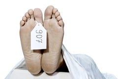 Human feet Stock Images