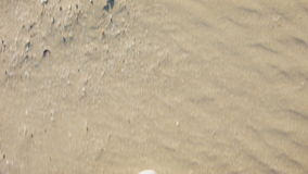 Human feet in sneakers running on sand stock video footage