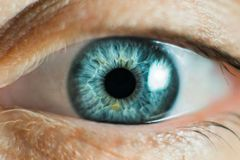 Human Female eye macro. Closeup shot of female gray - blue colour eye with day Stock Photos