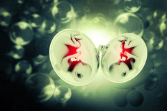 Human fetus. Digital illustration of Human fetus Royalty Free Stock Photography