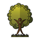 Human figure with tree plant ecological icon. Vector illustration design Royalty Free Stock Photos