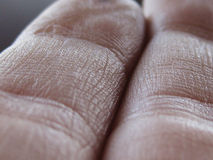 Human Finger Texture. A close up view on the texture of a human finger Stock Image