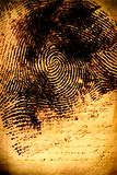 Human fingerprint Stock Photo