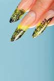 Human fingers with beautiful fingernail Royalty Free Stock Photo