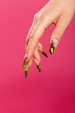 Human fingers with beautiful fingernail Royalty Free Stock Photos