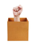 Human fist leaned out of the box Stock Image