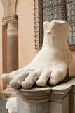 Human foot royalty free stock photo