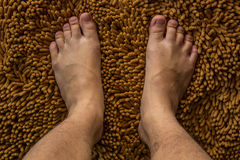 Human foot Stock Photography