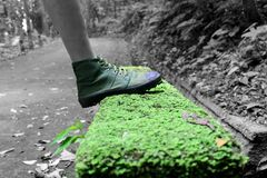 Human Foot and Grass Field Selective Color Footage Royalty Free Stock Images