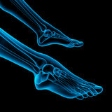 Human foot Royalty Free Stock Photo