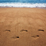 Human foot prints in the sand Stock Image