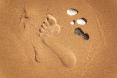 Human footprint on the beach sand. Memories of the sea. Greetings from vacation. Evening on the beach. Human footprint on the beach sand. Memories of the sea Stock Photo