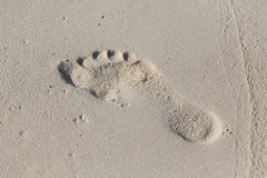Human footprint on beach sand Royalty Free Stock Photos