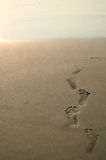 Human footprints and beach Royalty Free Stock Photography