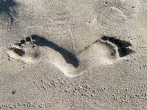 Human footprints on a beach Royalty Free Stock Photography