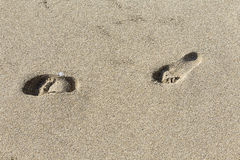 Human footprints in the beach Royalty Free Stock Images