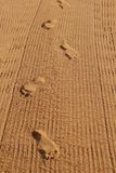Human footprints on the beach sand Royalty Free Stock Photos
