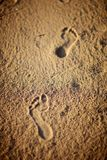 Human footprints on the beach sand Royalty Free Stock Images
