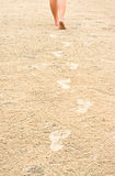 Human footprints on the beach sand leading away Royalty Free Stock Images