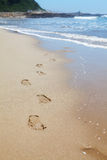 Human footprints on the beach sand leading towards the viewer Royalty Free Stock Image