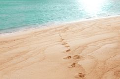 Human footprints on beach sand Stock Photography