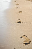 Human footprints on the beach sand. Traces on the beach of a man or a woman. Footsteps on the beach in summer Royalty Free Stock Photo