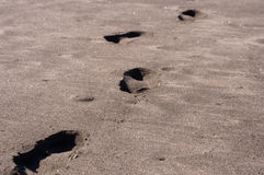 Human footprints on the beach Royalty Free Stock Photography