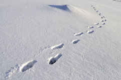 Human footprints in deep snow Royalty Free Stock Photography