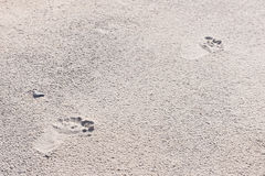 Human footprints in sand Stock Image