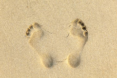 Human footprints in the sand at the beach Royalty Free Stock Image
