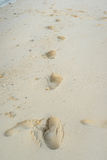 Human footprints in the sand beach Royalty Free Stock Image