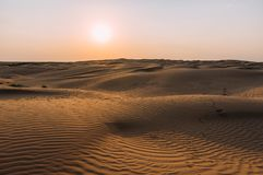 Human footprints in the sand in the desert stock photo