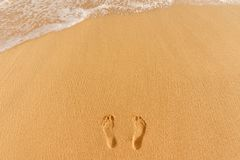Human footprints on the sandy beach Stock Images